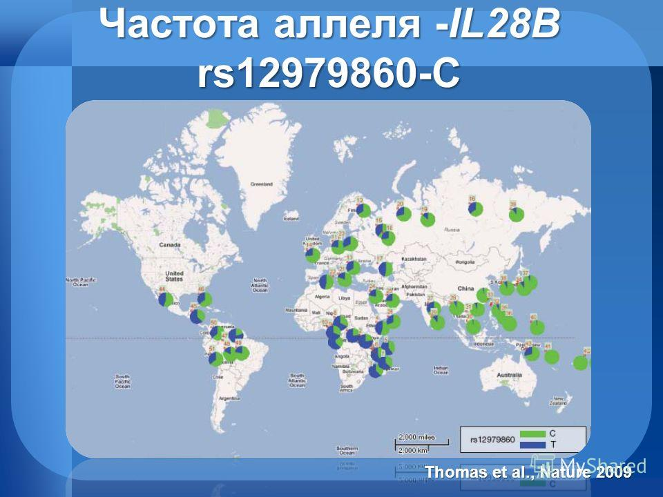 Частота аллеля -IL28B rs12979860-C Thomas et al., Nature 2009