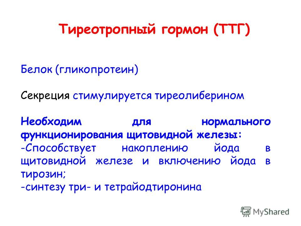 Тиреотропный гормон (ТТГ) Белок (гликопротеин) Секреция стимулируется тиреолиберином Необходим для нормального функционирования щитовидной железы: -Способствует накоплению йода в щитовидной железе и включению йода в тирозин; -синтезу три- и тетрайодт