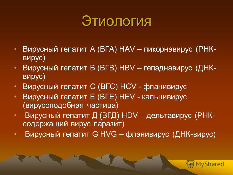 Этиология Вирусный гепатит А (ВГА) HAV – пикорнавирус (РНК- вирус) Вирусный гепатит В (ВГВ) HBV – гепаднавирус (ДНК- вирус) Вирусный гепатит С (ВГС) HCV - фланивирус Вирусный гепатит Е (ВГЕ) HEV - кальцивирус (вирусоподобная частица) Вирусный гепатит