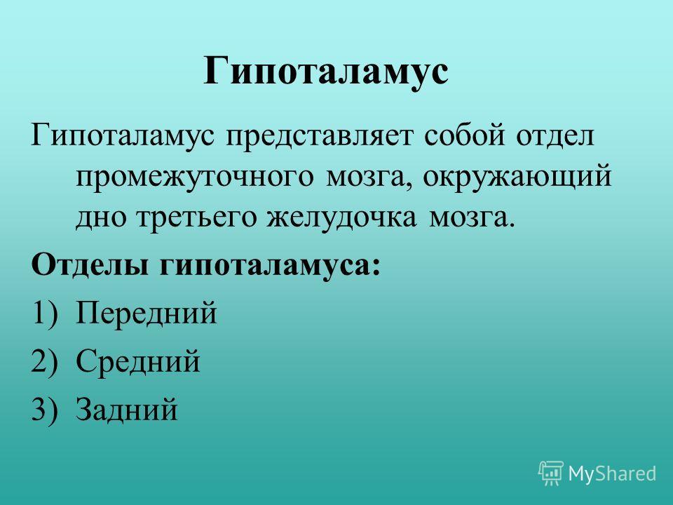 Гипоталамус Гипоталамус представляет собой отдел промежуточного мозга, окружающий дно третьего желудочка мозга. Отделы гипоталамуса: 1)Передний 2)Средний 3)Задний