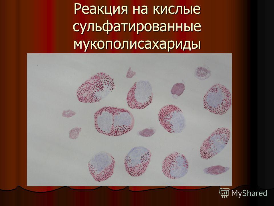 Реакция на кислые сульфатированные мукополисахариды