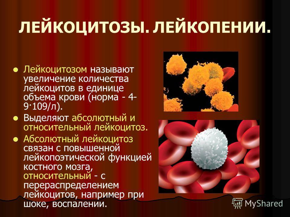 ЛЕЙКОЦИТОЗЫ. ЛЕЙКОПЕНИИ. Лейкоцитозом называют увеличение количества лейкоцитов в единице объема крови (норма - 4- 9·109/л). Выделяют абсолютный и относительный лейкоцитоз. Абсолютный лейкоцитоз связан с повышенной лейкопоэтической функцией костного