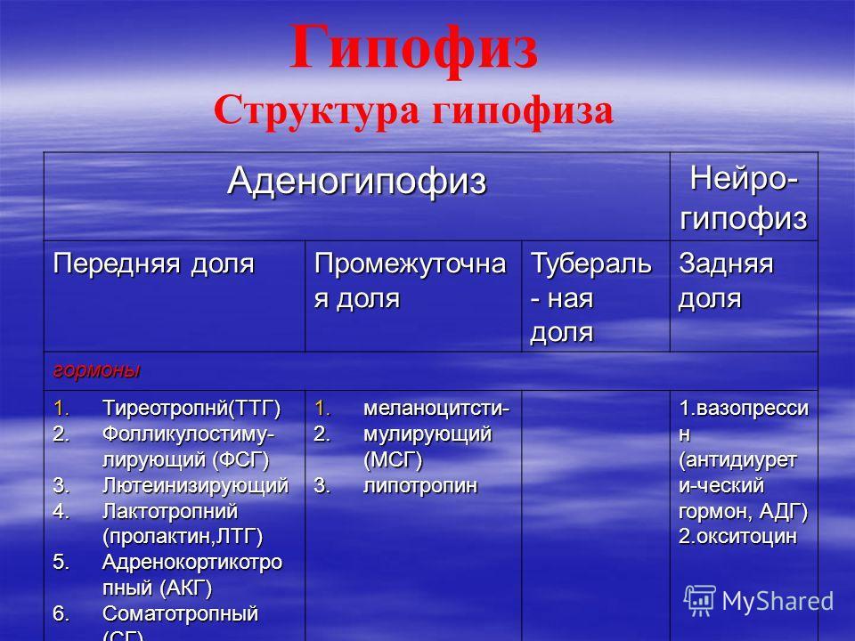 Гипофиз Структура гипофиза Аденогипофиз Нейро- гипофиз Передняя доля Промежуточна я доля Тубераль - ная доля Задняя доля гормоны 1.Тиреотропнй(ТТГ) 2.Фолликулостиму- лирующий (ФСГ) 3.Лютеинизирующий 4.Лактотропний (пролактин,ЛТГ) 5.Адренокортикотро п