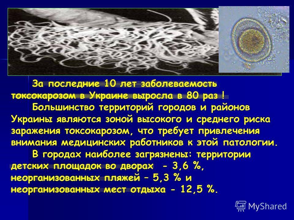 За последние 10 лет заболеваемость токсокарозом в Украине выросла в 80 раз ! Большинство территорий городов и районов Украины являются зоной высокого и среднего риска заражения токсокарозом, что требует привлечения внимания медицинских работников к э