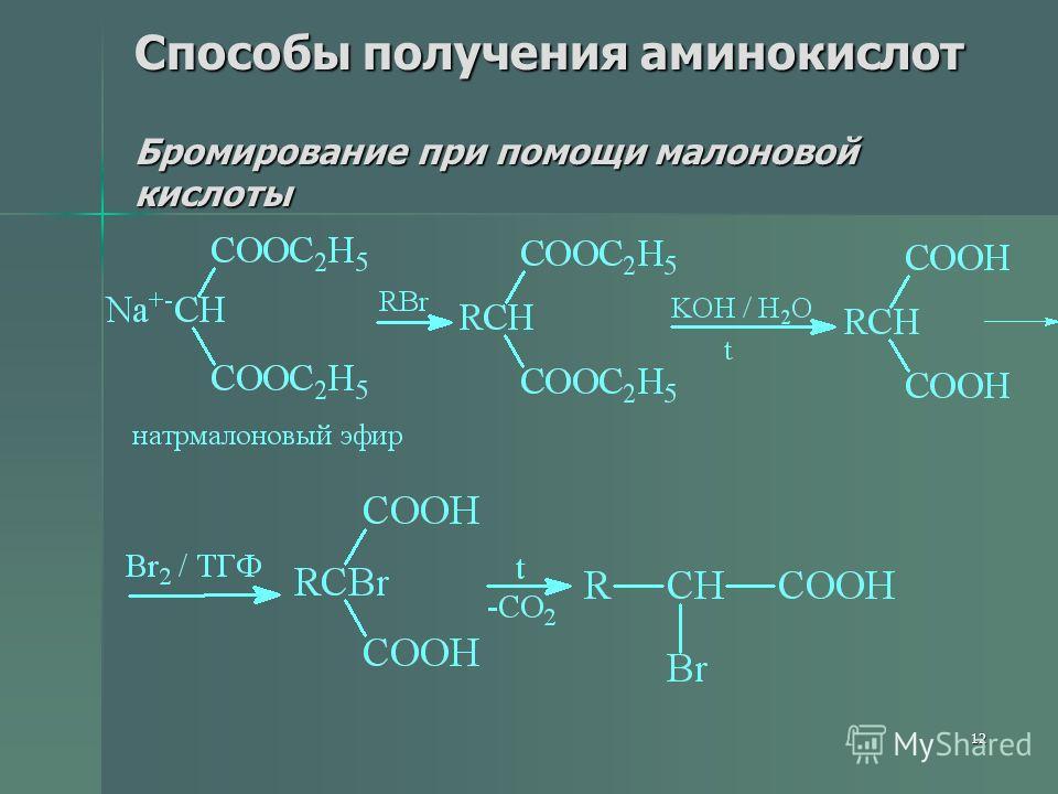 12 Способы получения аминокислот Бромирование при помощи малоновой кислоты