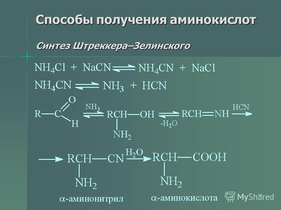 13 Способы получения аминокислот Синтез Штреккера–Зелинского