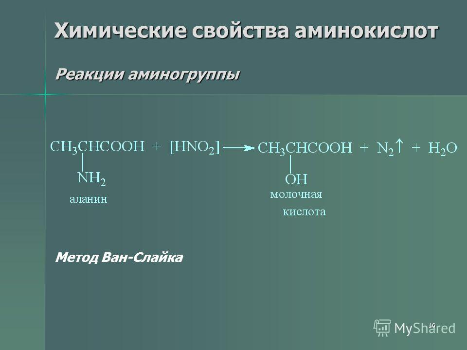 16 Химические свойства аминокислот Реакции аминогруппы Метод Ван-Слайка