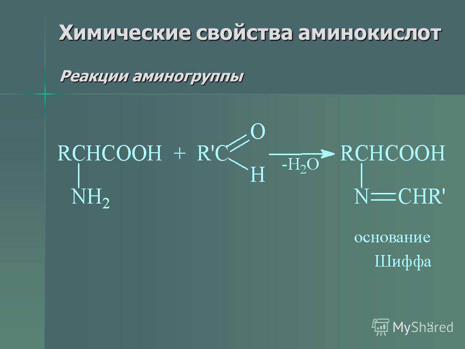 17 Химические свойства аминокислот Реакции аминогруппы
