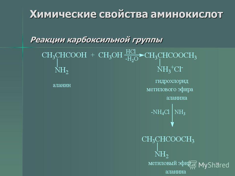 18 Химические свойства аминокислот Реакции карбоксильной группы