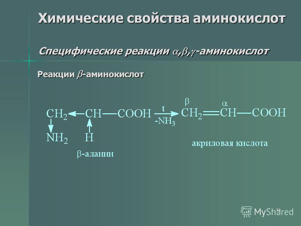 23 Химические свойства аминокислот Специфические реакции,, -аминокислот Реакции -аминокислот