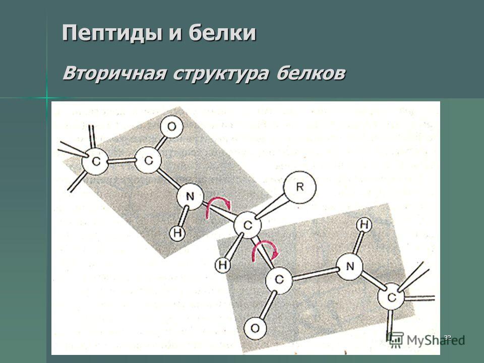 32 Пептиды и белки Вторичная структура белков