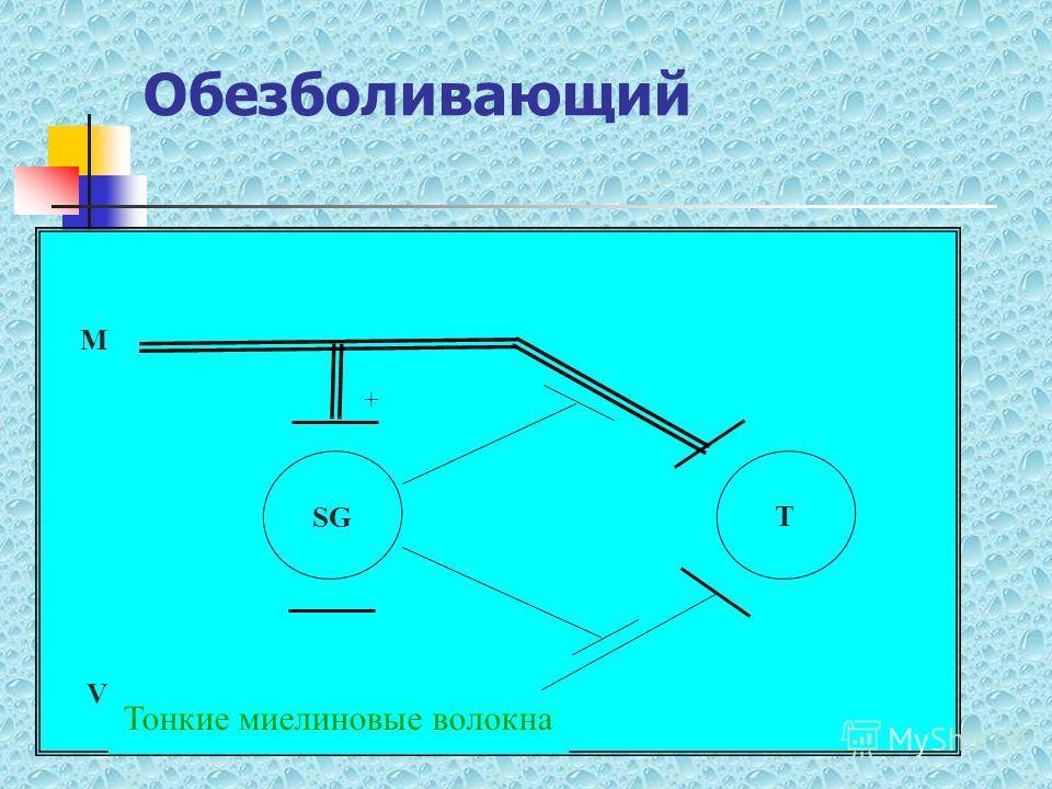 Обезболивающий SG T + M V Тонкие миелиновые волокна