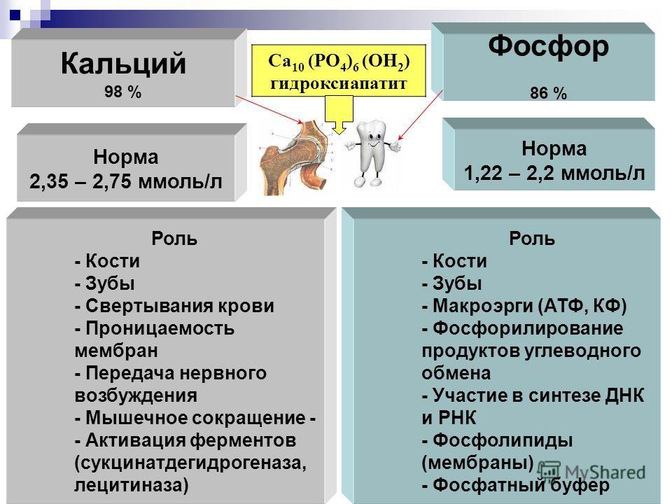 Кальций 98 % Фосфор 86 % Са 10 (РО 4 ) 6 (ОН 2 ) гидроксиапатит Норма 2,35 – 2,75 ммоль/л Норма 1,22 – 2,2 ммоль/л Роль - Кости - Зубы - Свертывания крови - Проницаемость мембран - Передача нервного возбуждения - Мышечное сокращение - - Активация фер
