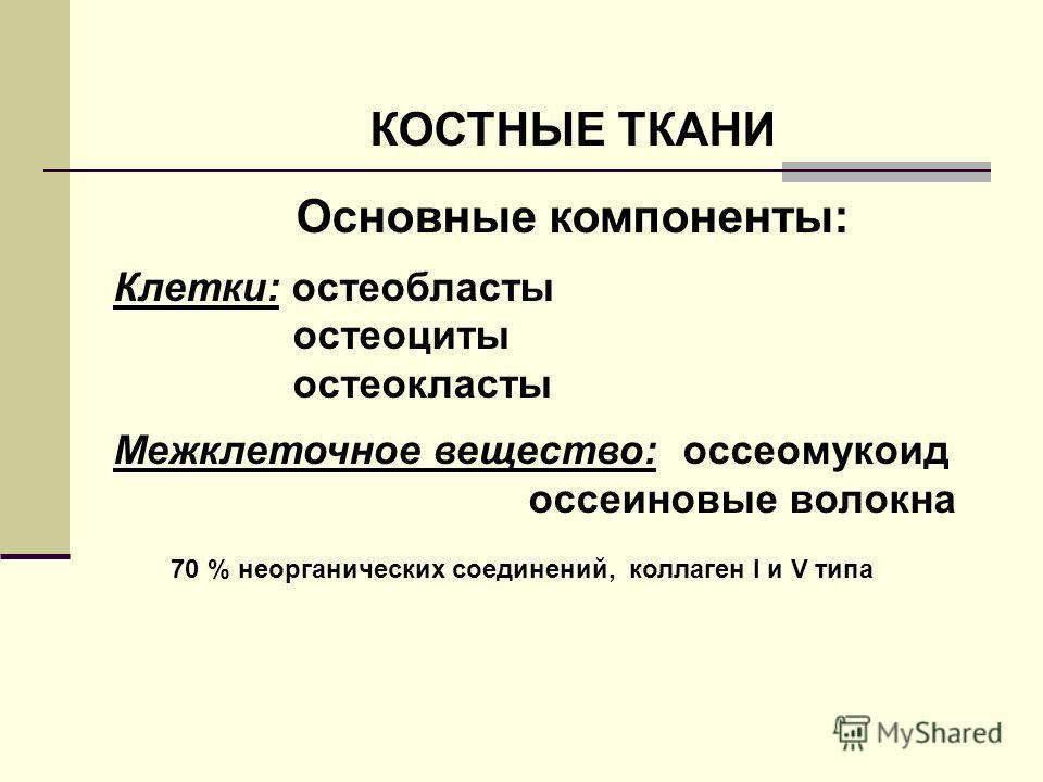 КОСТНЫЕ ТКАНИ Основные компоненты: Клетки: остеобласты остеоциты остеокласты Межклеточное вещество: оссеомукоид оссеиновые волокна 70 % неорганических соединений, коллаген I и V типа