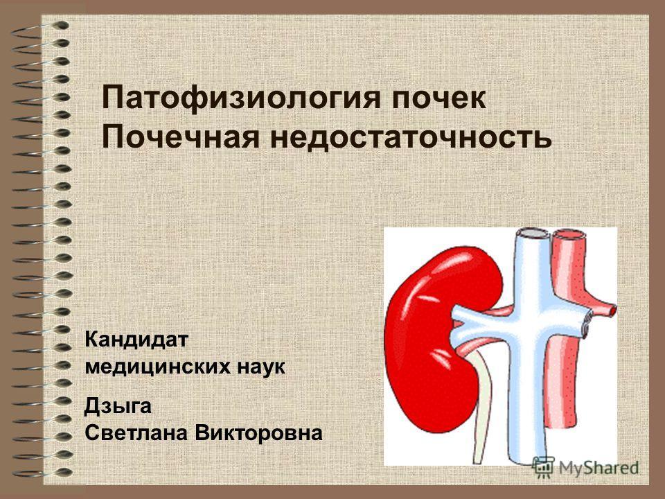 Патофизиология почек Почечная недостаточность Кандидат медицинских наук Дзыга Светлана Викторовна