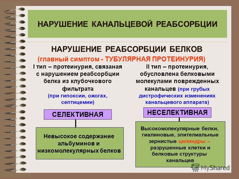НАРУШЕНИЕ КАНАЛЬЦЕВОЙ РЕАБСОРБЦИИ (главный симптом - ТУБУЛЯРНАЯ ПРОТЕИНУРИЯ) СЕЛЕКТИВНАЯ НЕСЕЛЕКТИВНАЯ НАРУШЕНИЕ РЕАБСОРБЦИИ БЕЛКОВ Высокомолекулярные белки, гиалиновые, эпителиальные зернистые цилиндры – разрушенные клетки и белковые структуры канал