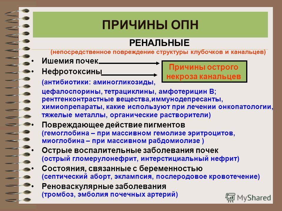 ПРИЧИНЫ ОПН РЕНАЛЬНЫЕ (непосредственное повреждение структуры клубочков и канальцев) Ишемия почек Нефротоксины (антибиотики: аминогликозиды, цефалоспорины, тетрациклины, амфотерицин В; рентгенконтрастные вещества,иммунодепресанты, химиопрепараты, как