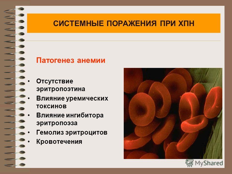 СИСТЕМНЫЕ ПОРАЖЕНИЯ ПРИ ХПН Патогенез анемии Отсутствие эритропоэтина Влияние уремических токсинов Влияние ингибитора эритропоэза Гемолиз эритроцитов Кровотечения