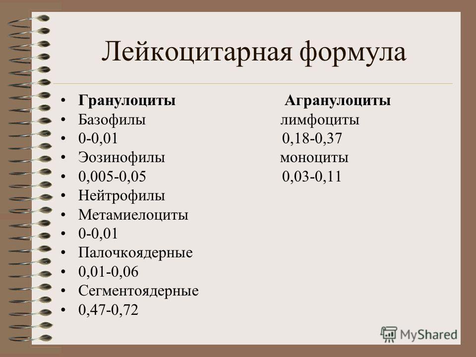 Лейкоцитарная формула Гранулоциты Агранулоциты Базофилы лимфоциты 0-0,01 0,18-0,37 Эозинофилы моноциты 0,005-0,05 0,03-0,11 Нейтрофилы Метамиелоциты 0-0,01 Палочкоядерные 0,01-0,06 Сегментоядерные 0,47-0,72