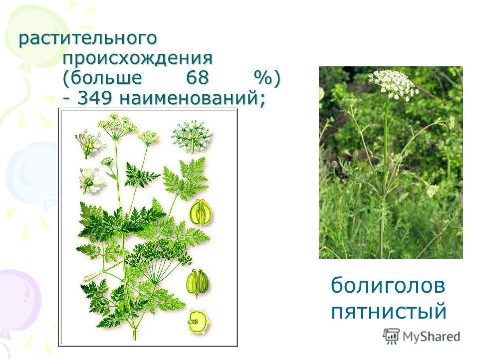 растительного происхождения (больше 68 %) - 349 наименований; болиголов пятнистый