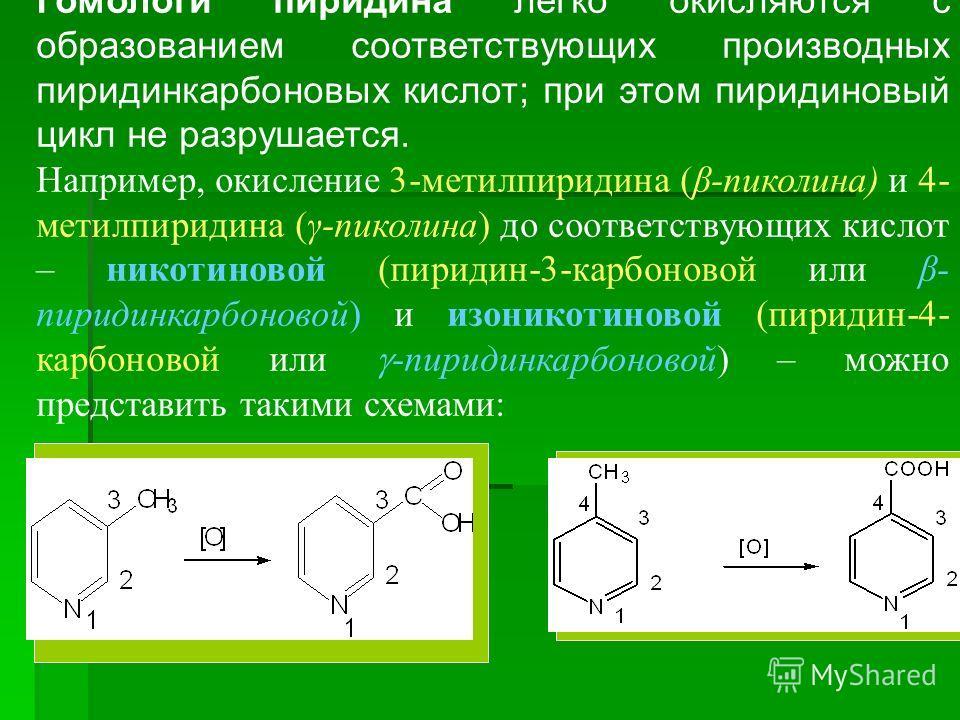 Гомологи пиридина легко окисляются с образованием соответствующих производных пиридинкарбоновых кислот; при этом пиридиновый цикл не разрушается. Например, окисление 3-метилпиридина (β-пиколина) и 4- метилпиридина (γ-пиколина) до соответствующих кисл