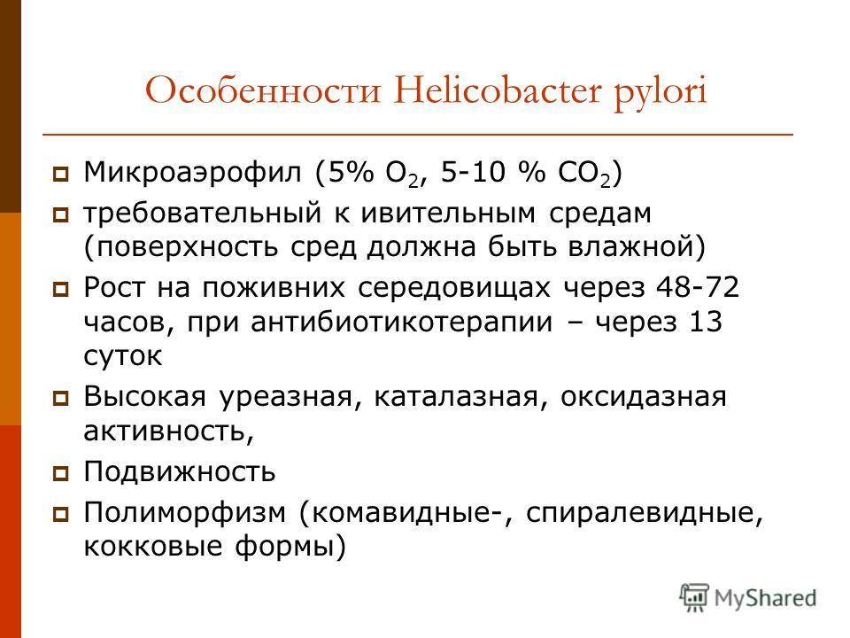 Особенности Helicobacter pylori Микроаэрофил (5% О 2, 5-10 % СО 2 ) требовательный к ивительным средам (поверхность сред должна быть влажной) Рост на поживних середовищах через 48-72 часов, при антибиотикотерапии – через 13 суток Высокая уреазная, ка
