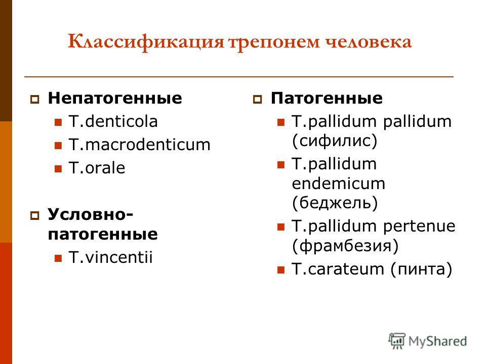 Классификация трепонем человека Непатогенные T.denticola T.macrodenticum T.orale Условно- патогенные T.vincentii Патогенные T.pallidum pallidum (сифилис) T.pallidum endemicum (беджель) T.pallidum pertenue (фрамбезия) T.carateum (пинта)