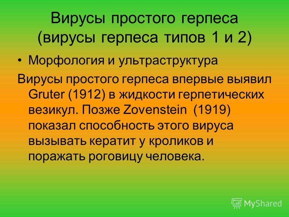 Вирусы простого герпеса (вирусы герпеса типов 1 и 2) Морфология и ультраструктура Вирусы простого герпеса впервые выявил Gruter (1912) в жидкости герпетических везикул. Позже Zovenstein (1919) показал способность этого вируса вызывать кератит у кроли