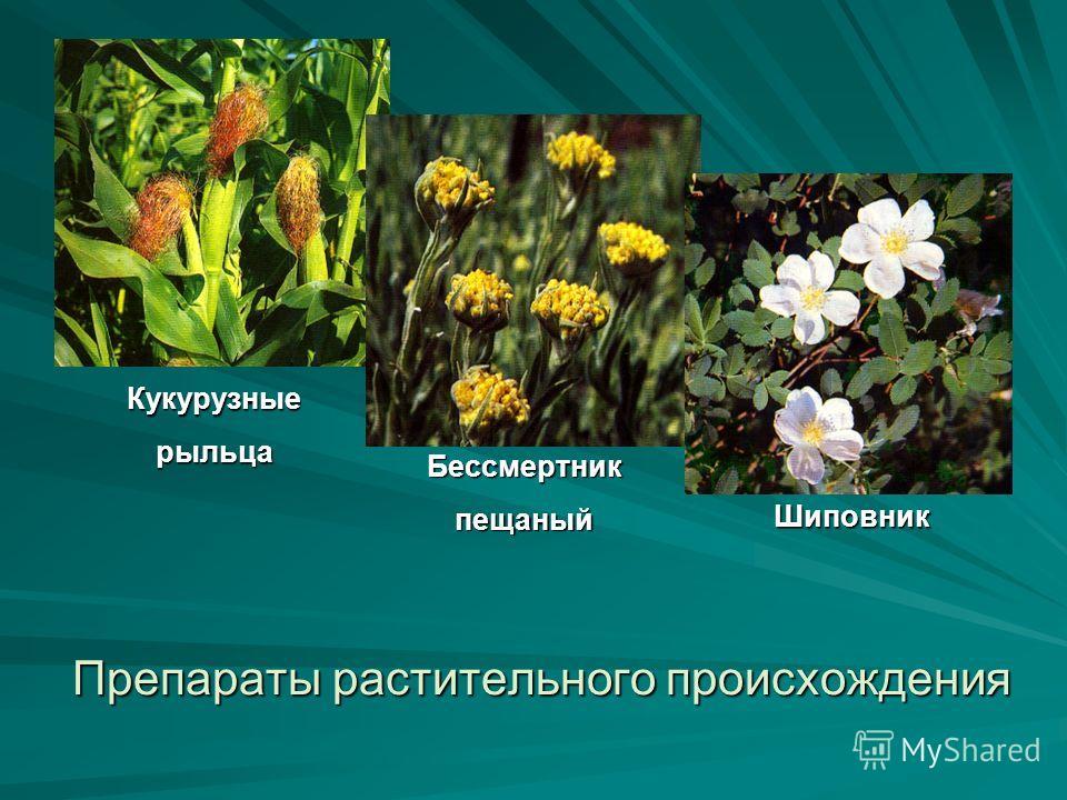 Препараты растительного происхождения Кукурузныерыльца Бессмертникпещаный Шиповник