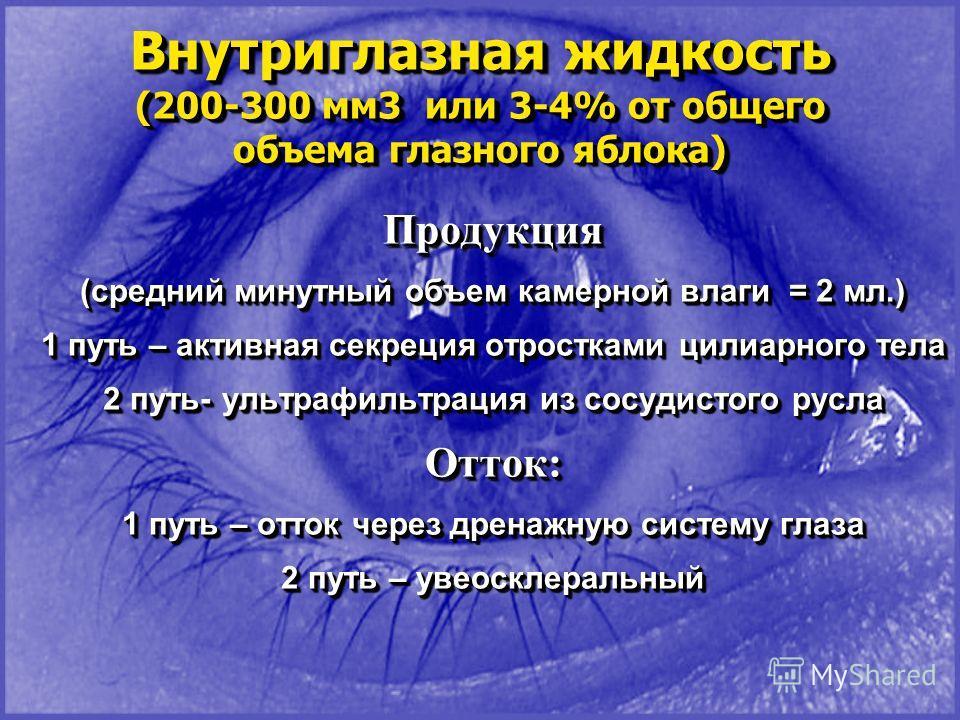 Внутриглазная жидкость (200-300 мм3 или 3-4% от общего объема глазного яблока) Внутриглазная жидкость (200-300 мм3 или 3-4% от общего объема глазного яблока) Продукция (средний минутный объем камерной влаги = 2 мл.) 1 путь – активная секреция отростк