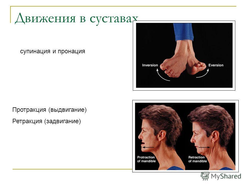 Движения в суставах супинация и пронация Протракция (выдвигание) Ретракция (задвигание)
