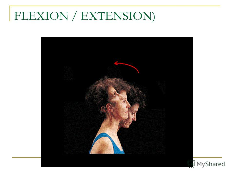 FLEXION / EXTENSION)