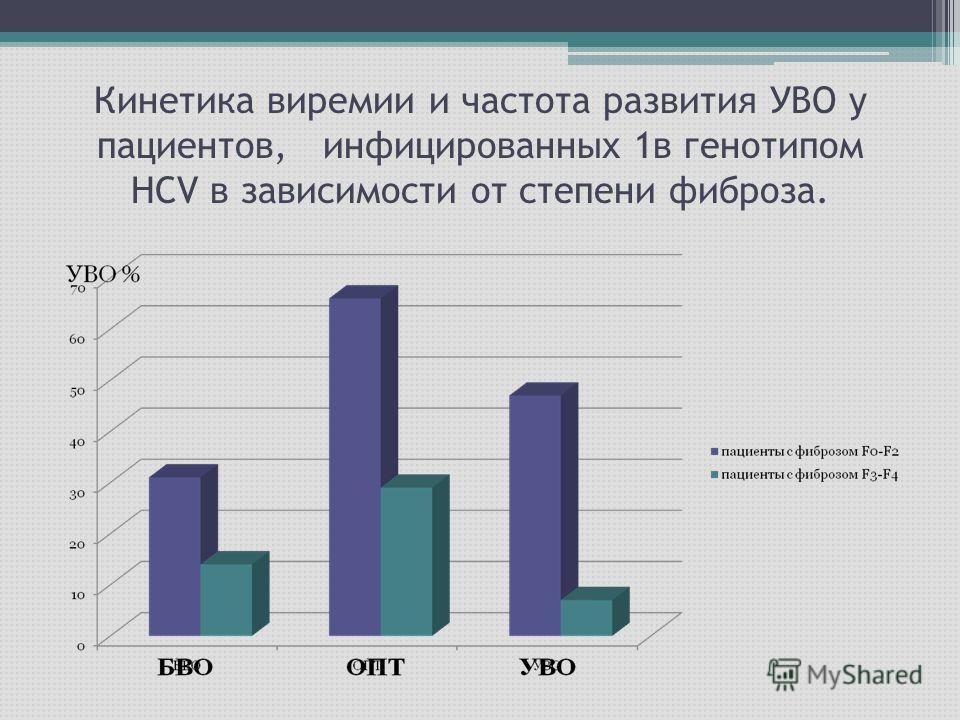 Кинетика виремии и частота развития УВО у пациентов, инфицированных 1в генотипом НСV в зависимости от степени фиброза.
