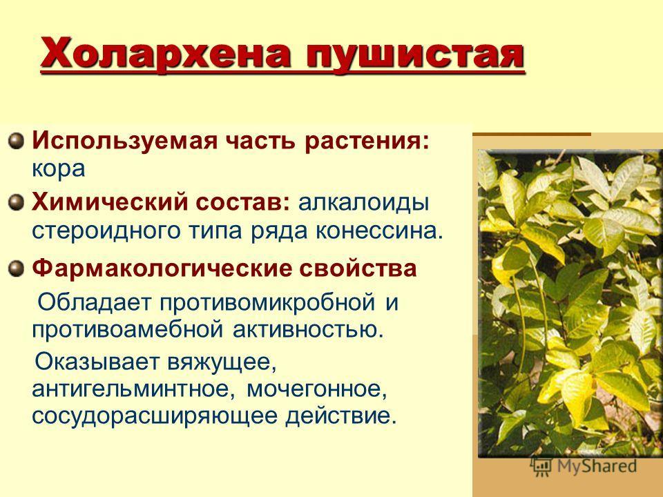 Холархена пушистая Используемая часть растения: кора Химический состав: алкалоиды стероидного типа ряда конессина. Фармакологические свойства Обладает противомикробной и противоамебной активностью. Оказывает вяжущее, антигельминтное, мочегонное, сосу