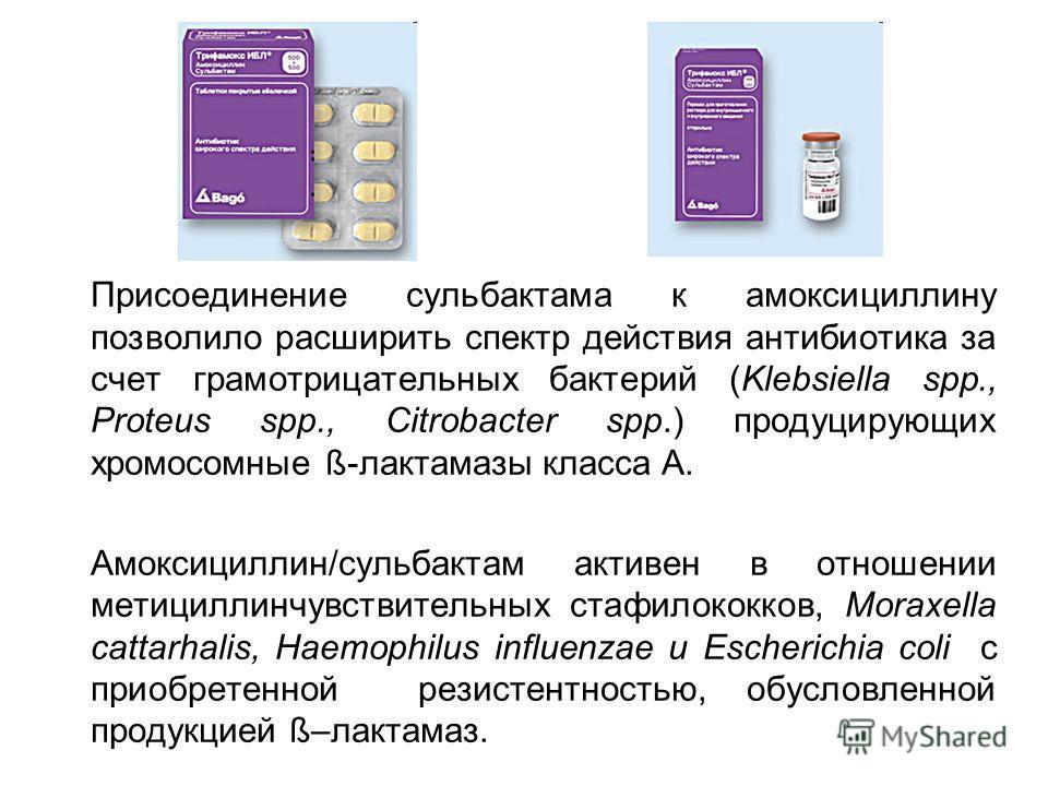 Присоединение сульбактама к амоксициллину позволило расширить спектр действия антибиотика за счет грамотрицательных бактерий (Klebsiella spp., Proteus spp., Citrobacter spp.) продуцирующих хромосомные ß-лактамазы класса А. Амоксициллин/сульбактам акт