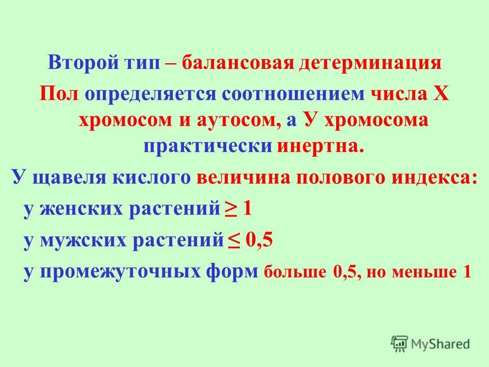 Второй тип – балансовая детерминация Пол определяется соотношением числа Х хромосом и аутосом, а У хромосома практически инертна. У щавеля кислого величина полового индекса: у женских растений 1 у мужских растений 0,5 у промежуточных форм больше 0,5,