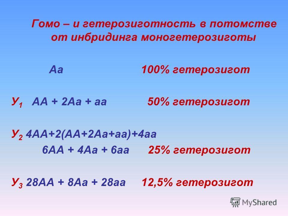 Гомо – и гетерозиготность в потомстве от инбридинга моногетерозиготы Аа 100% гетерозигот У 1 АА + 2Аа + аа 50% гетерозигот У 2 4АА+2(АА+2Аа+аа)+4аа 6АА + 4Аа + 6аа 25% гетерозигот У 3 28АА + 8Аа + 28аа 12,5% гетерозигот