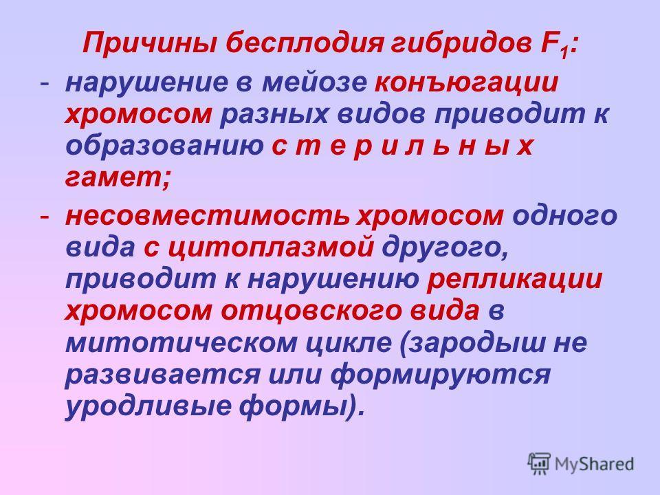 Причины бесплодия гибридов F 1 : -нарушение в мейозе конъюгации хромосом разных видов приводит к образованию с т е р и л ь н ы х гамет; -несовместимость хромосом одного вида с цитоплазмой другого, приводит к нарушению репликации хромосом отцовского в