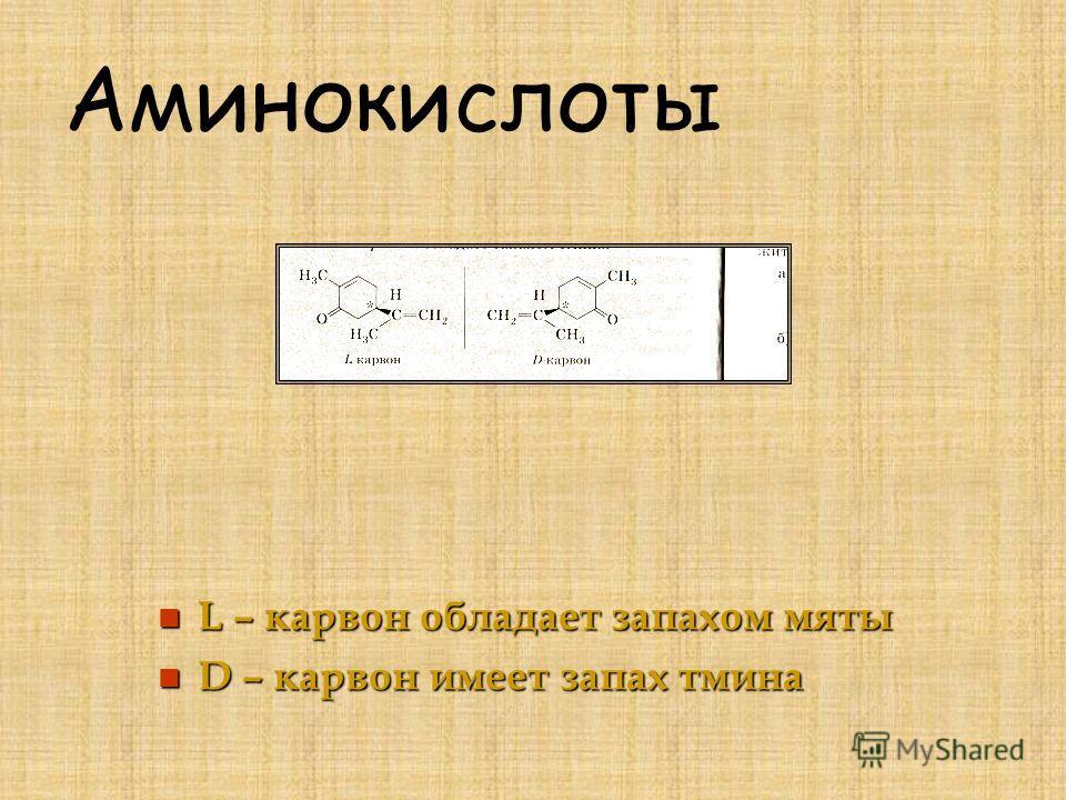Аминокислоты L – карвон обладает запахом мяты L – карвон обладает запахом мяты D – карвон имеет запах тмина D – карвон имеет запах тмина