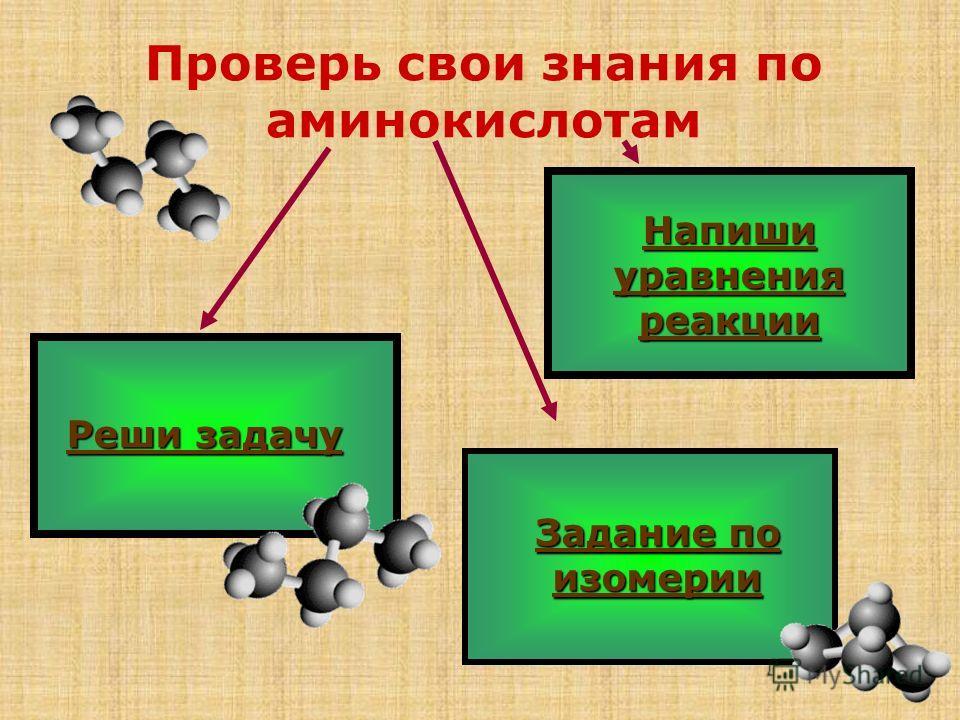 Проверь свои знания по аминокислотам Реши задачу Реши задачу Напиши уравнения реакции Напиши уравнения реакции Задание по изомерии Задание по изомерии