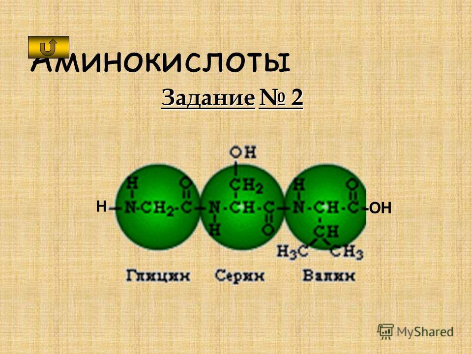 Аминокислоты Задание 2 H -OH