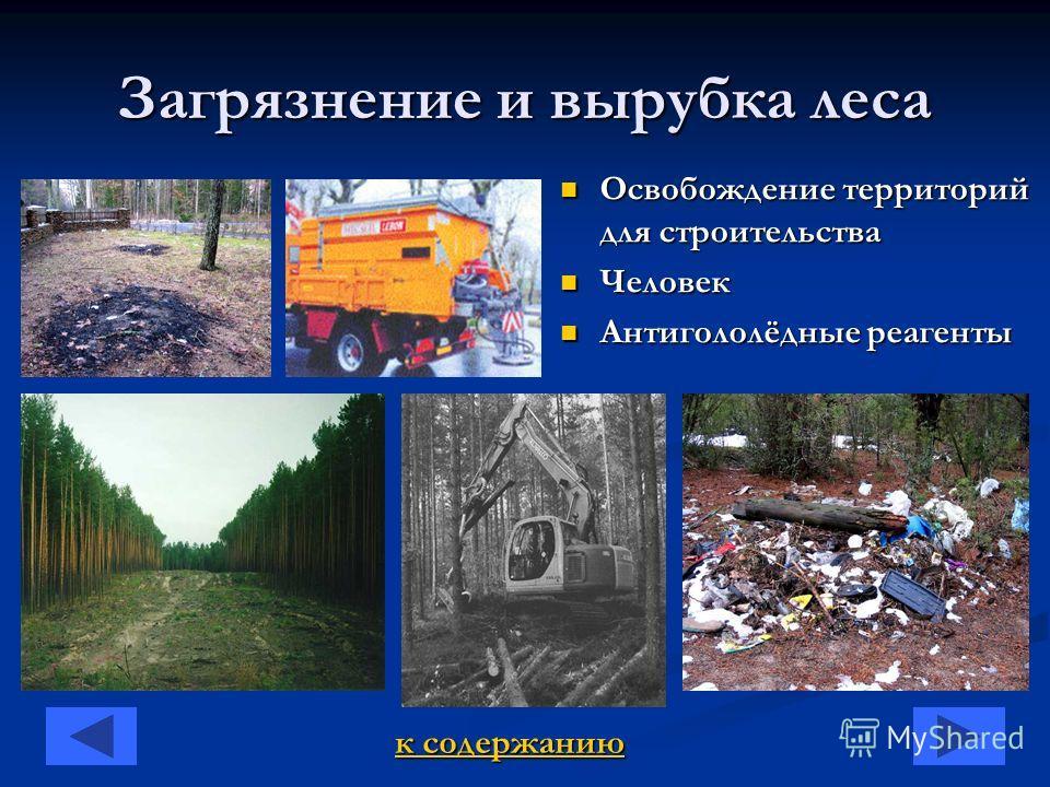 Загрязнение и вырубка леса Освобождение территорий для строительства Человек Антигололёдные реагенты к содержанию к содержанию