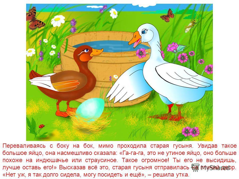 Возле старой усадьбы вырос такой большой лопух, что для утки, которая высиживала там яйца, его заросли казались густым лесом. «Кря-Кря-Кря», – приветствовала она шестерых птенцов, вылупившихся из скорлупок. Теперь она ждала седьмого – последнего. Яйц