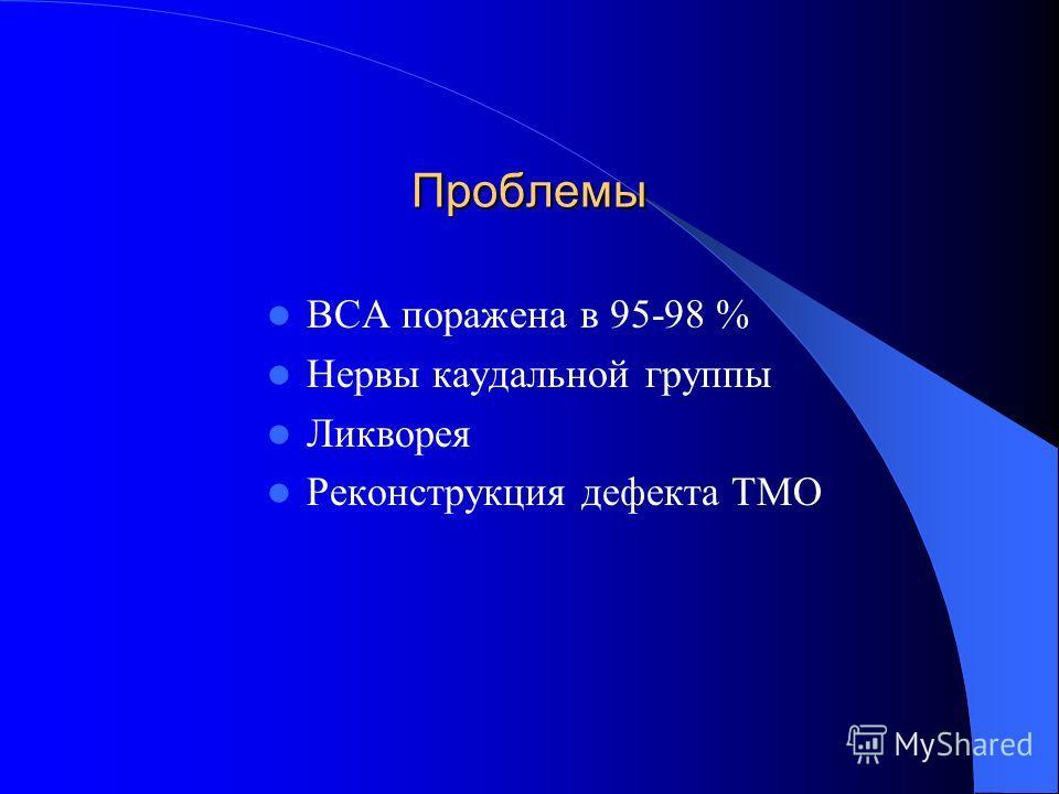 Проблемы ВСА поражена в 95-98 % Нервы каудальной группы Ликворея Реконструкция дефекта ТМО