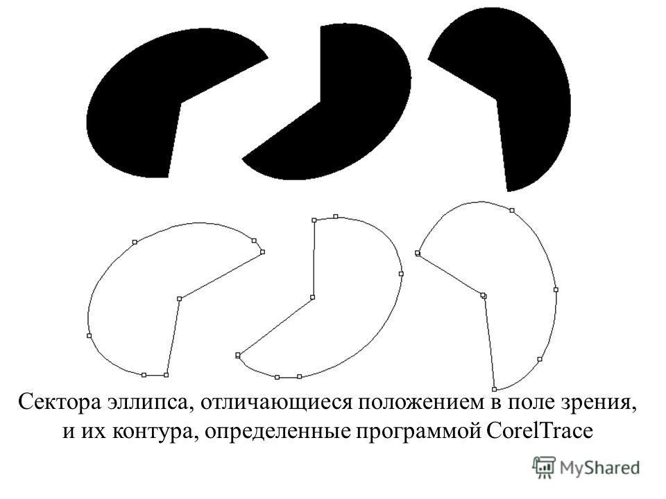 Сектора эллипса, отличающиеся положением в поле зрения, и их контура, определенные программой CorelTrace