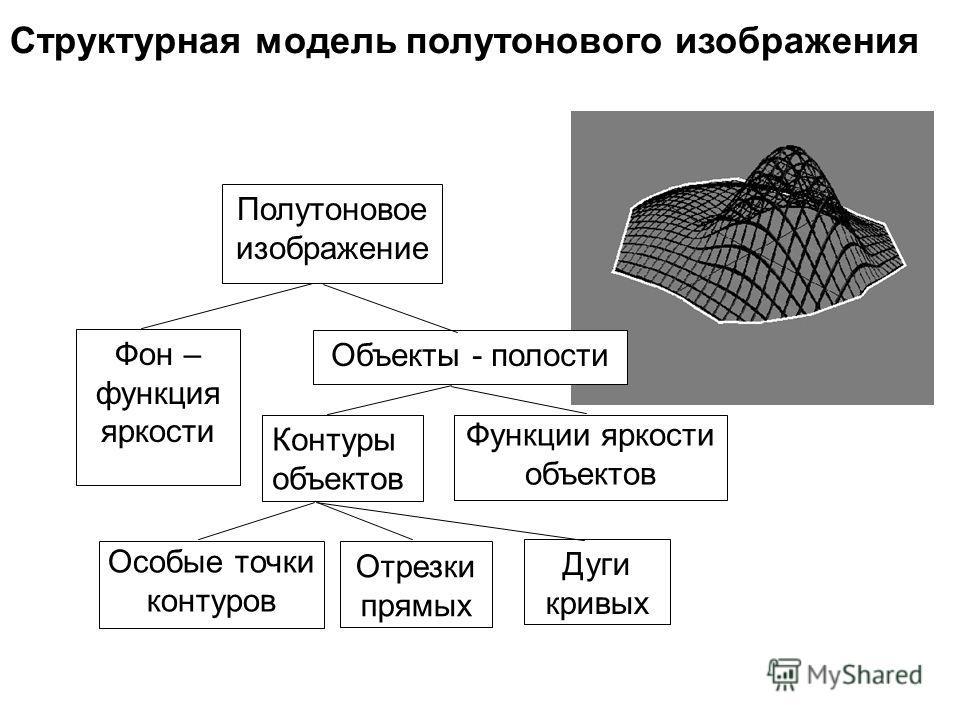 Структурная модель полутонового изображения Полутоновое изображение Фон – функция яркости Объекты - полости Контуры объектов Функции яркости объектов Особые точки контуров Отрезки прямых Дуги кривых