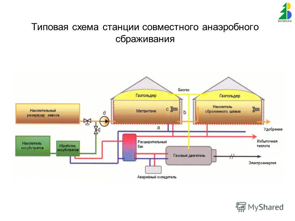 Типовая схема станции совместного анаэробного сбраживания