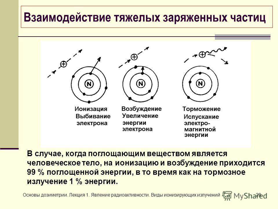 Основы дозиметрии. Лекция 1. Явление радиоактивности. Виды ионизирующих излучений28 В случае, когда поглощающим веществом является человеческое тело, на ионизацию и возбуждение приходится 99 % поглощенной энергии, в то время как на тормозное излучени