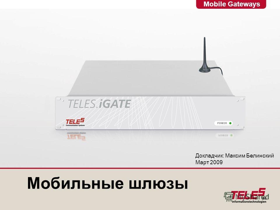 Mobile Gateways Мобильные шлюзы Докладчик: Максим Белинский Март 2009