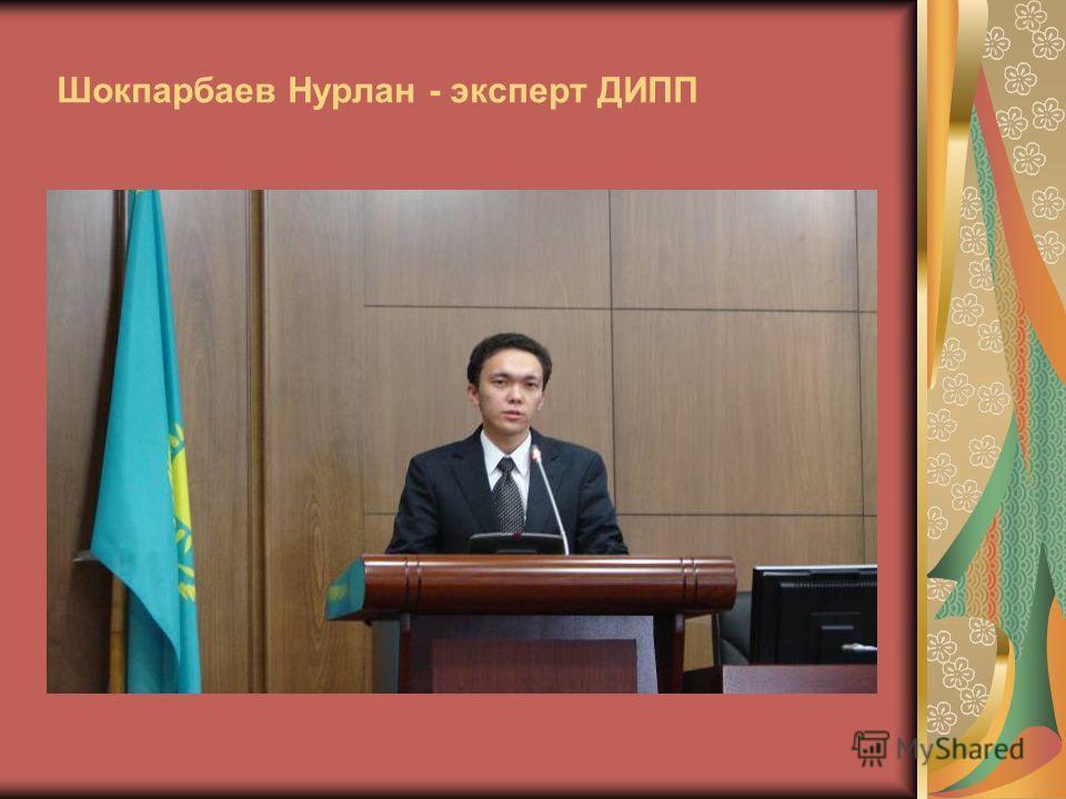 Шокпарбаев Нурлан - эксперт ДИПП